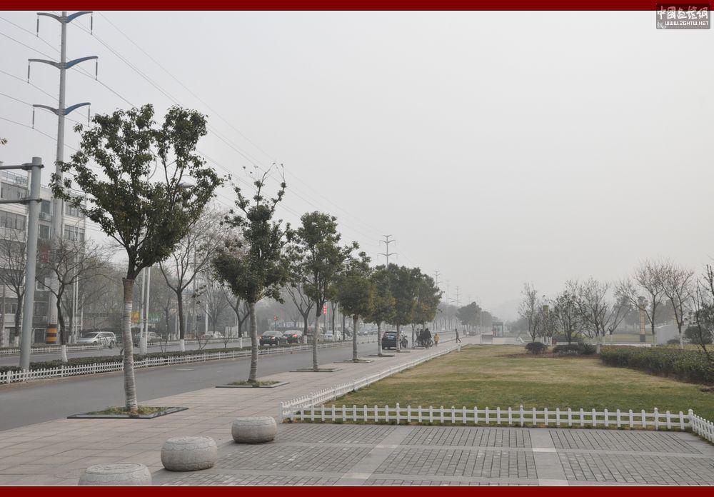 柳新镇中心街道路改造及管网配套工程