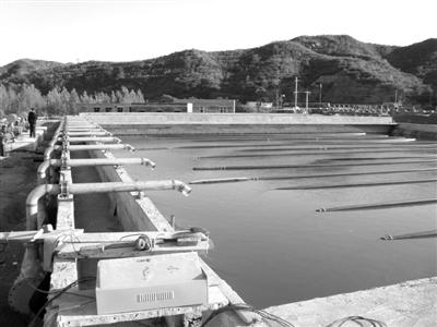 哈尔滨市成高子镇污水处理工程施工招标公告