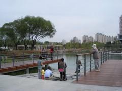 望和公园项目(施工)招标公告